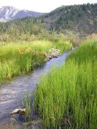 Протоки на Каракольских озёрах